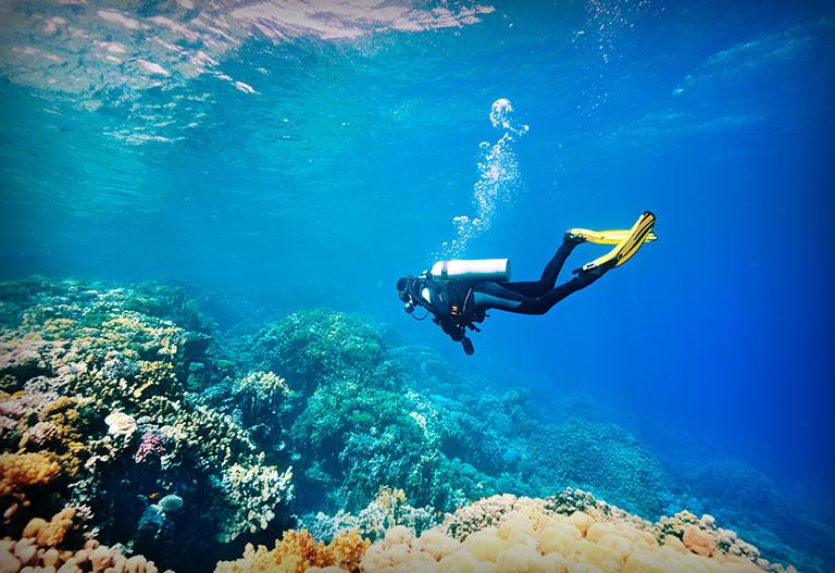 Un plongeur dans les profondeurs de l'océan